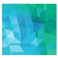 RARE-X logo